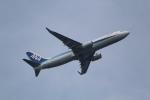 ANA744Foreverさんが、羽田空港で撮影した全日空 737-881の航空フォト(写真)