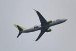 ANA744Foreverさんが、羽田空港で撮影したソラシド エア 737-81Dの航空フォト(写真)