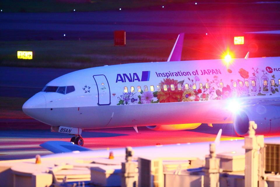 khideさんの全日空 Boeing 737-800 (JA85AN) 航空フォト