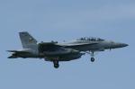NOTE00さんが、三沢飛行場で撮影したアメリカ海軍 EA-18G Growlerの航空フォト(写真)