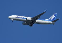 くーぺいさんが、新千歳空港で撮影した全日空 737-881の航空フォト(飛行機 写真・画像)