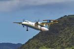 tsubasa0624さんが、新石垣空港で撮影した琉球エアーコミューター DHC-8-103Q Dash 8の航空フォト(写真)