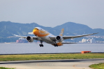 T.Sazenさんが、関西国際空港で撮影したスクート (〜2017) 787-8 Dreamlinerの航空フォト(飛行機 写真・画像)