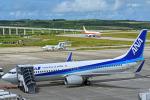 tsubasa0624さんが、新石垣空港で撮影した全日空 737-881の航空フォト(飛行機 写真・画像)