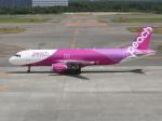 アイスコーヒーさんが、新千歳空港で撮影したピーチ A320-214の航空フォト(飛行機 写真・画像)