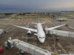 Y.Hさんが、ダラス・フォートワース国際空港で撮影した日本航空 787-8 Dreamlinerの航空フォト(飛行機 写真・画像)