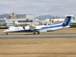 アイスコーヒーさんが、伊丹空港で撮影したANAウイングス DHC-8-402Q Dash 8の航空フォト(飛行機 写真・画像)