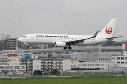 ころちゃんさんが、福岡空港で撮影した日本トランスオーシャン航空 737-8Q3の航空フォト(飛行機 写真・画像)