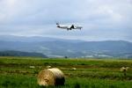 渚くんさんが、旭川空港で撮影した日本航空 767-346の航空フォト(写真)