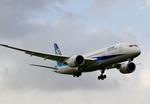 しゅあさんが、伊丹空港で撮影したボーイング 787-8 Dreamlinerの航空フォト(飛行機 写真・画像)