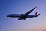 パンダさんが、成田国際空港で撮影したターキッシュ・エアラインズ 777-3F2/ERの航空フォト(写真)