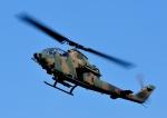じーく。さんが、札幌飛行場で撮影した陸上自衛隊 AH-1Sの航空フォト(写真)
