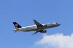 non-nonさんが、フランクフルト国際空港で撮影したルフトハンザドイツ航空 A320-211の航空フォト(写真)