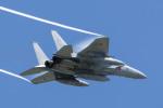 Yagamaniaさんが、札幌飛行場で撮影した航空自衛隊 F-15J Eagleの航空フォト(写真)