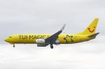 りんたろうさんが、フランクフルト国際空港で撮影したトゥイフライ 737-8K5の航空フォト(写真)