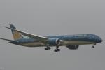 LEGACY-747さんが、成田国際空港で撮影したベトナム航空 787-9の航空フォト(写真)