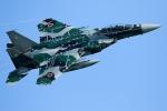 RUNDY!さんが、小松空港で撮影した航空自衛隊 F-15DJ Eagleの航空フォト(写真)