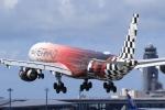 多楽さんが、成田国際空港で撮影したエティハド航空 A340-642Xの航空フォト(写真)