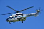パンダさんが、館山航空基地で撮影した海上保安庁 AS332L1 Super Pumaの航空フォト(飛行機 写真・画像)