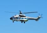 じーく。さんが、館山航空基地で撮影した海上保安庁 AS332L1 Super Pumaの航空フォト(飛行機 写真・画像)
