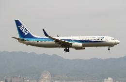 ハピネスさんが、関西国際空港で撮影した全日空 737-881の航空フォト(飛行機 写真・画像)