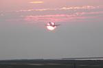 新潟空港 - Niigata Airport [KIJ/RJSN]で撮影されたヤクティア・エア - Yakutia Airlines [R3/SYL]の航空機写真