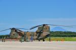 パンダさんが、館山航空基地で撮影した陸上自衛隊 CH-47Jの航空フォト(写真)