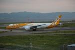 セブンさんが、関西国際空港で撮影したスクート (〜2017) 787-9の航空フォト(飛行機 写真・画像)