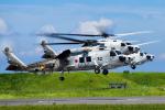 パンダさんが、館山航空基地で撮影した海上自衛隊 SH-60Kの航空フォト(写真)