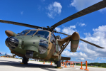 パンダさんが、館山航空基地で撮影した陸上自衛隊 UH-60JAの航空フォト(写真)