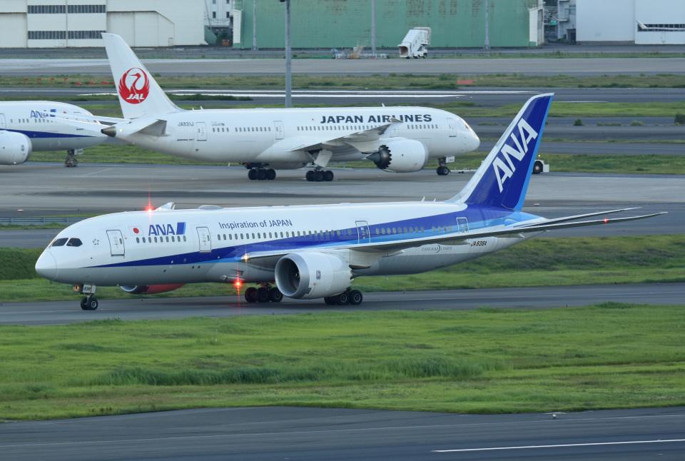 tsubasa0624さんの全日空 Boeing 787-8 Dreamliner (JA838A) 航空フォト