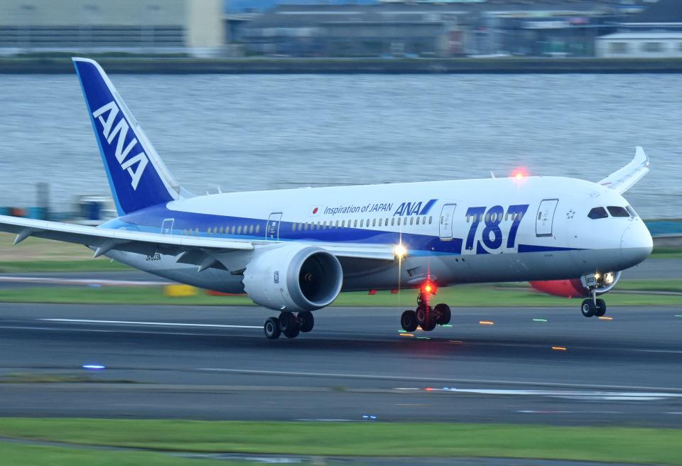 tsubasa0624さんの全日空 Boeing 787-8 Dreamliner (JA803A) 航空フォト