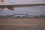寛太さんが、羽田空港で撮影した全日空 787-8 Dreamlinerの航空フォト(写真)