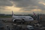 寛太さんが、羽田空港で撮影した日本航空 767-346/ERの航空フォト(写真)
