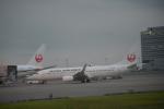 寛太さんが、羽田空港で撮影した日本航空 737-846の航空フォト(写真)