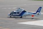 セブンさんが、札幌飛行場で撮影したオールニッポンヘリコプター AS365N2 Dauphin 2の航空フォト(飛行機 写真・画像)