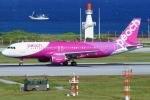 Double_Hさんが、那覇空港で撮影したピーチ A320-214の航空フォト(写真)