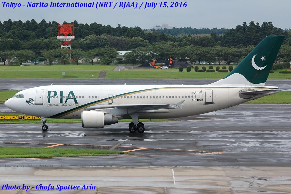 Chofu Spotter Ariaさんのパキスタン国際航空 Airbus A310-300 (AP-BGR) 航空フォト