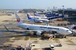 りんたろうさんが、中部国際空港で撮影した日本航空 767-346/ERの航空フォト(写真)