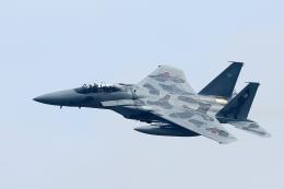 RUNDY!さんが、小松空港で撮影した航空自衛隊 F-15DJ Eagleの航空フォト(飛行機 写真・画像)