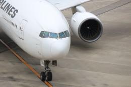 鶴の旅人さんが、羽田空港で撮影した日本航空 777-289の航空フォト(飛行機 写真・画像)