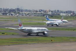 鶴の旅人さんが、羽田空港で撮影した日本航空 777-246/ERの航空フォト(飛行機 写真・画像)