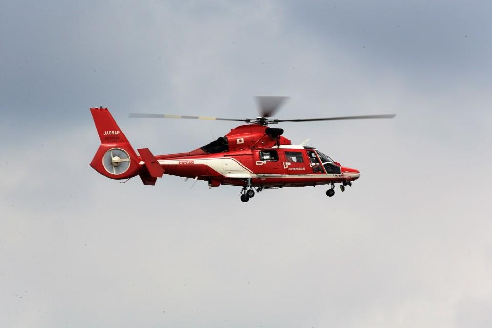 T.Sazenさんの名古屋市消防航空隊 Airbus Helicopters AS365/565 (JA08AR) 航空フォト