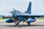 パンダさんが、千歳基地で撮影した航空自衛隊 F-2Aの航空フォト(写真)