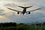 サボリーマンさんが、高知空港で撮影した全日空 787-8 Dreamlinerの航空フォト(飛行機 写真・画像)