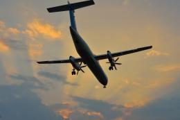 サボリーマンさんが、高知空港で撮影したANAウイングス DHC-8-402Q Dash 8の航空フォト(飛行機 写真・画像)