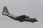 とらとらさんが、千歳基地で撮影した航空自衛隊 C-130H Herculesの航空フォト(飛行機 写真・画像)