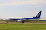 とらとらさんが、千歳基地で撮影した全日空 737-881の航空フォト(写真)