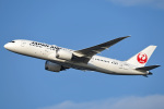 tsubasa0624さんが、羽田空港で撮影した日本航空 787-8 Dreamlinerの航空フォト(写真)