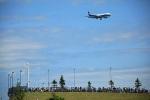 ペア ドゥさんが、千歳基地で撮影した全日空 777-281の航空フォト(写真)